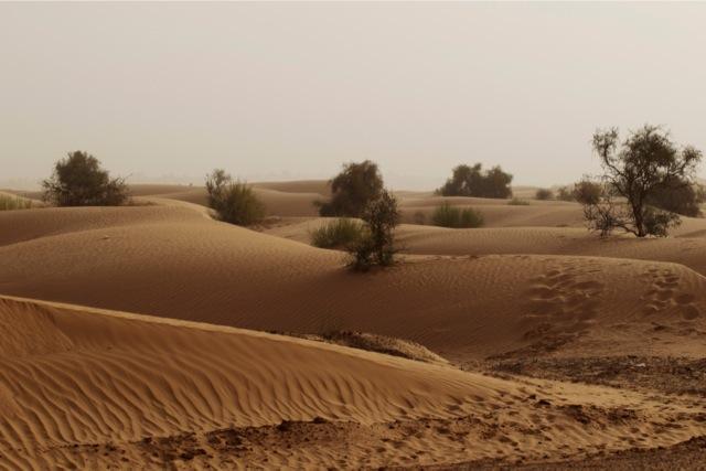 Γιατί η άμμος είναι πλέον περιζήτητη σαν τον χρυσό