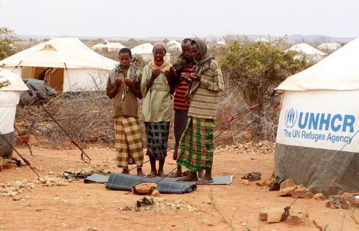 Συμμαχία ΟΗΕ-ΙΚΕΑ για τη στέγαση των προσφύγων
