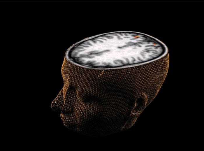 Μπορούμε να αντιστρέψουμε τη λειτουργία του μυαλού;