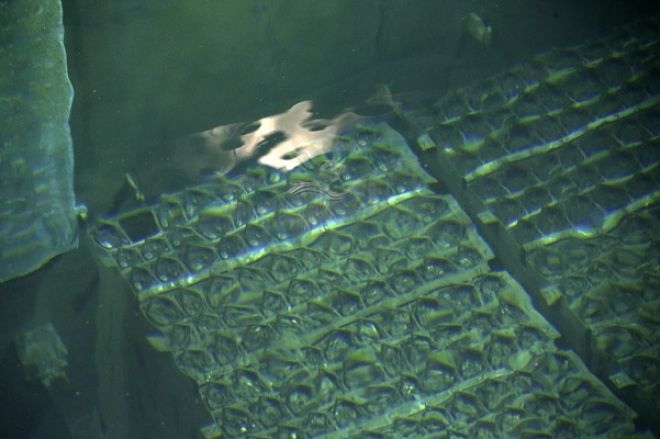 Nuclear fuel rods are seen in the spent fuel pool inside the No.4 reactor building in Fukushima prefecture