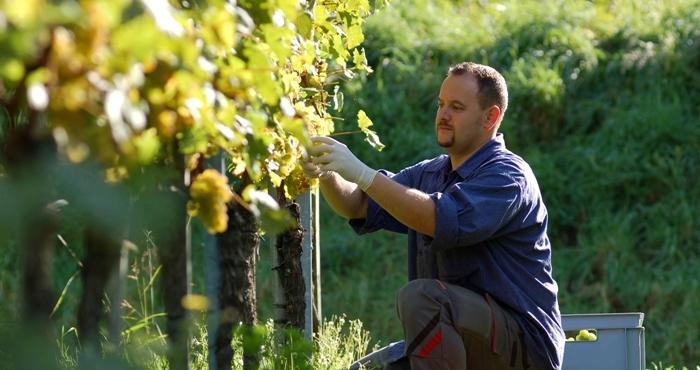 Ο Έλληνας αγρότης αλλάζει