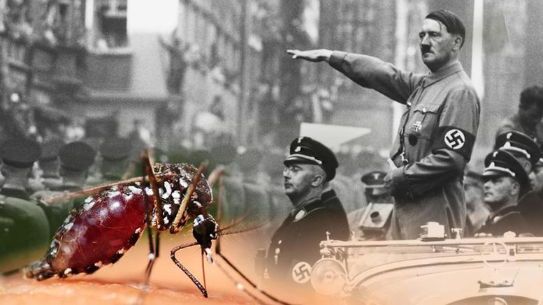 Ο Χίτλερ θα βομβάρδιζε την Ευρώπη με κουνούπια-στούκας!