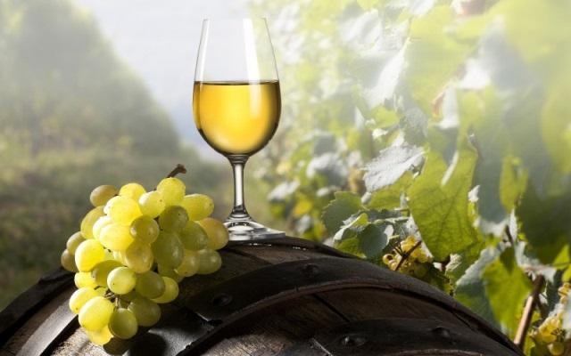 Διεθνείς διακρίσεις για τους λευκούς οίνους Τσιλιλή