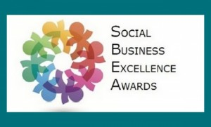 Social Business Excellence Awards 2014