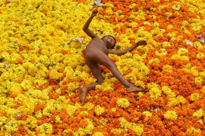 epaselect epa05560444 An Indian toddler plays amid marigold flowers at a wasted flowers dumping site, besides a flower market in Mumbai, India, 28 September 2016. Marigold flowers are used in many religious ceremonies in the temples in India. Strung together they make colourful garlands and are used as an offering in temples and to decorate them.  EPA/DIVYAKANT SOLANKI