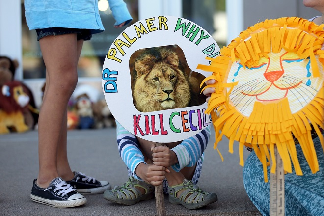 Piper Hoppe, 10, from Minnetonka, Minnesota, holds a sign at the doorway of River Bluff Dental clinic in protest against the killing of a famous lion in Zimbabwe, in Bloomington, Minnesota July 29, 2015. A Zimbabwean court on Wednesday charged a professional local hunter Theo Bronkhorst with failing to prevent an American from unlawfully killing 'Cecil', the southern African country's best-known lion. The American, Walter James Palmer, a Minnesota dentist who paid $50,000 to kill the lion, has left Zimbabwe. He says he did kill the animal but believed the hunt was legal and that the necessary permits had been issued. REUTERS/Eric Miller      TPX IMAGES OF THE DAY      - RTX1MBOK