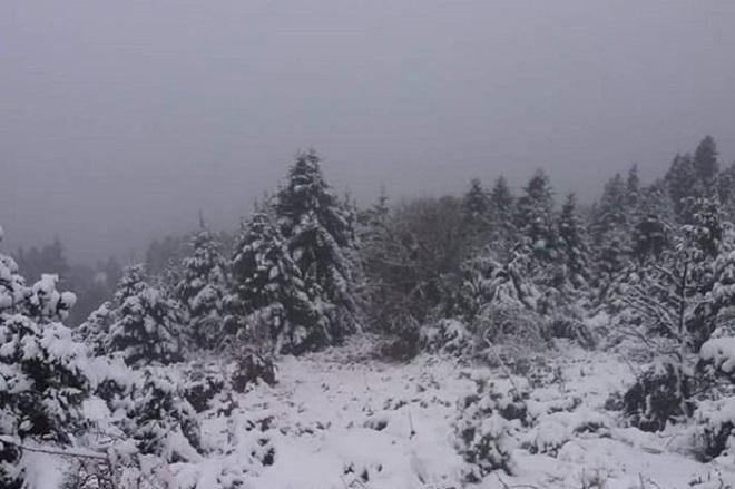 χιονι snow