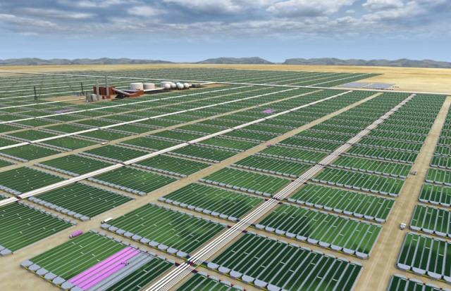 Σε μετάθεση της δημόσιας προσφοράς προχωρά η Algae Farms