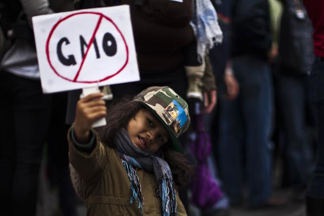 Γιατί η Monsanto κερδίζει πάντα