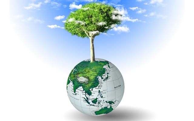 Εκπαιδευτικά σεμινάρια για μείωση του ενεργειακού κόστους από το πρόγραμμα Young Energy Europe