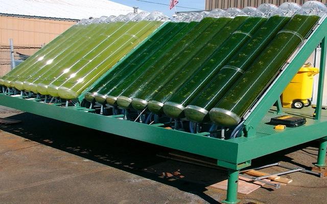 Ένα ΣΤΕΠ για την Algae-Farms στο Χρηματιστήριο Αθηνών