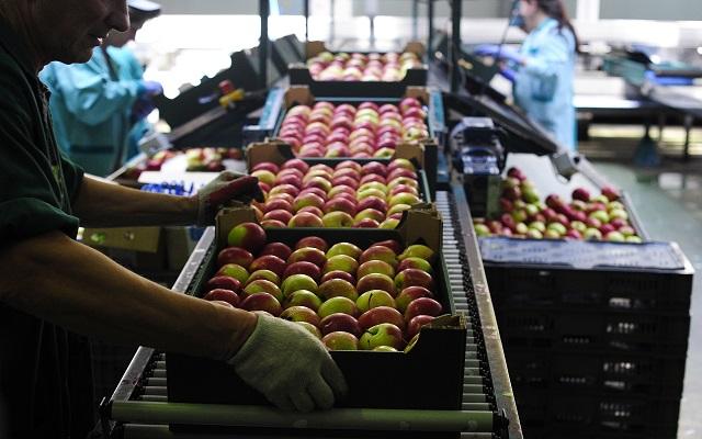 Αποζημιώσεις για τα φρούτα που μένουν στα «αζήτητα» θέλουν οι παραγωγοί