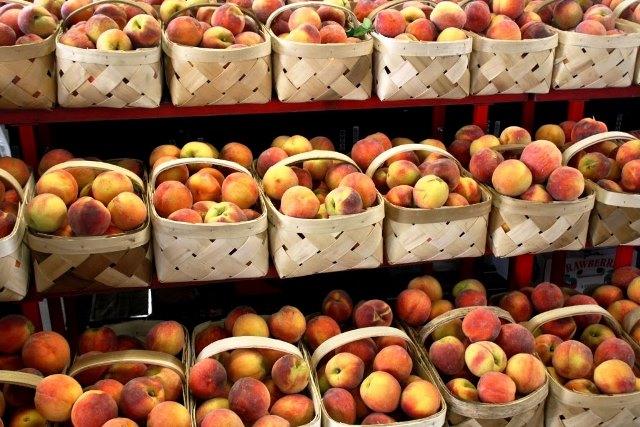 Κυβερνητικά μέτρα για την ενίσχυση των ροδακινοπαραγωγών