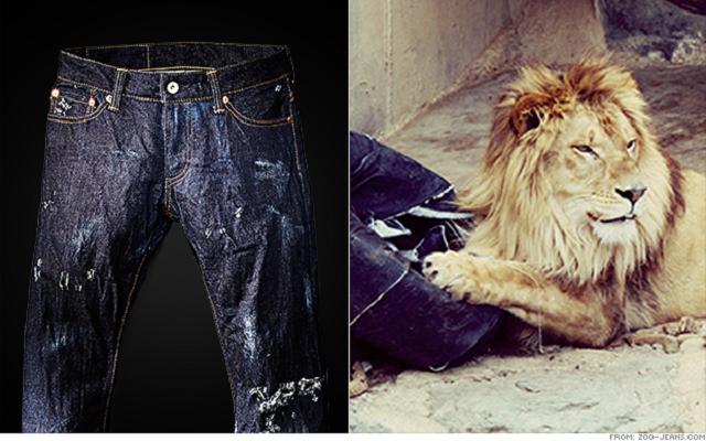 Τα σκισμένα από λιοντάρια jeans που… ξεπούλησαν!