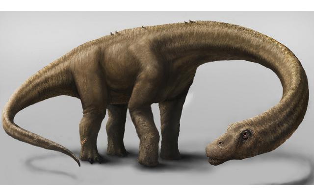 Ανακαλύφθηκε ίσως ο μεγαλύτερος δεινόσαυρος που περπάτησε στη Γη