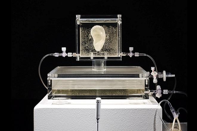 Το αυτί του Βαν Γκονκ, η μαγική βροχή και άλλα έργα τέχνης και τεχνολογίας