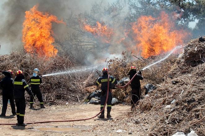 Ανυπολόγιστη η καταστροφή από την πυρκαγιά στην Εύβοια