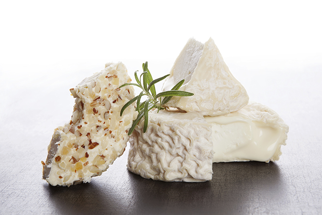 Culinary cheese eating. Goat cheese and cream cheese with fresh herbs isolated. Delicious cheese eating.