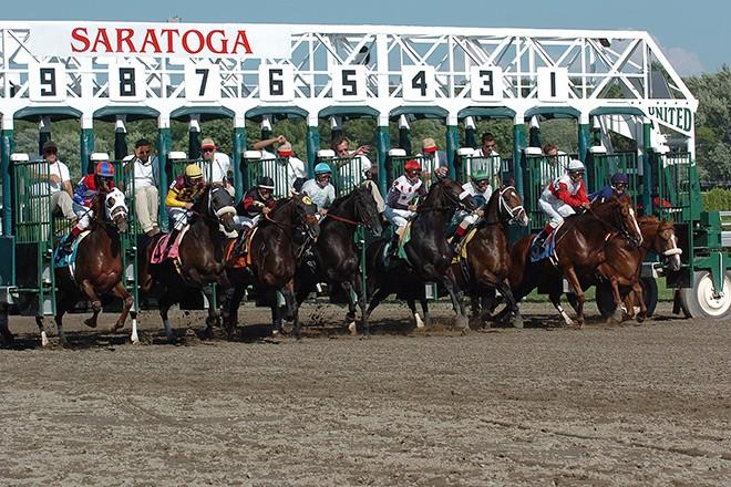 saratoga gate horses