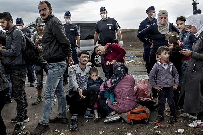 Η προσφυγική κρίση σε αριθμούς