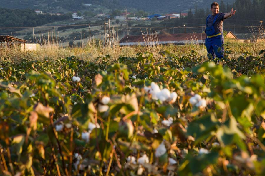 Έτοιμη να πάρει πίσω τις παράνομες αγροτικές επιδοτήσεις του 2008-2009 η κυβέρνηση