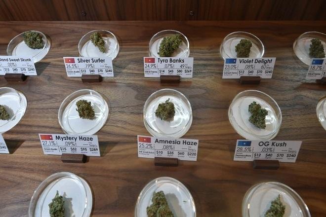 Τα τεράστια έσοδα που φέρνει η μαριχουάνα στις ΗΠΑ