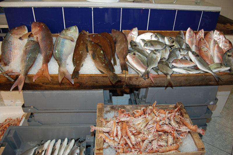 Βγαίνουν λεφτά στην Ελλάδα σήμερα; Ναι, ρωτήστε τον ψαρά!