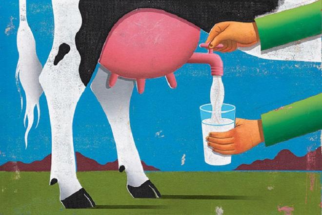 Υποχρεωτική η αναγραφή της χώρας προέλευσης για γάλα και κρέας