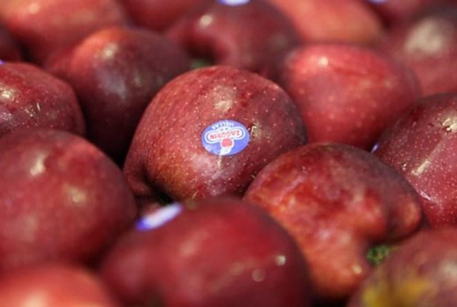 Εννέα τροφές που μας αδυνατίζουν και μας χορταίνουν