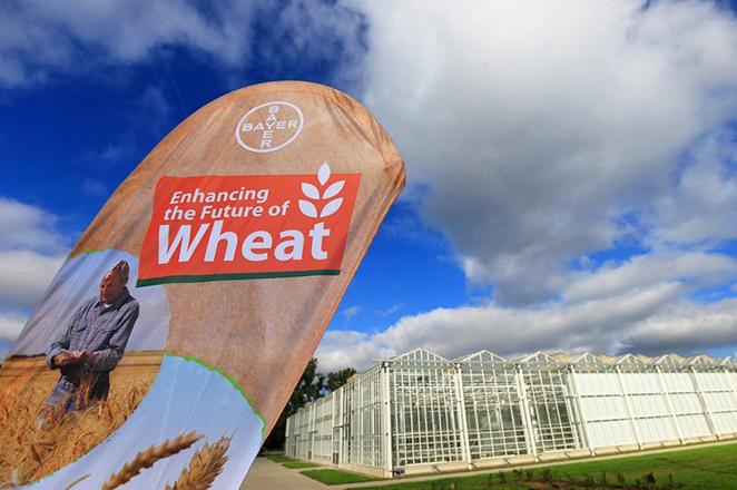 Η Bayer «ανεβάζει» τον πήχη για την εξαγορά της Monsanto