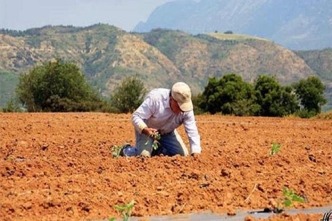 Στο 25% του ΑΕΠ της Ελλάδας η αδήλωτη οικονομία