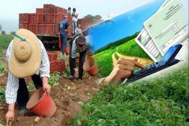 «Τσουχτερός» ΕΝΦΙΑ για εκατοντάδες χιλιάδες αγρότες