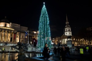 epa05655659 A 20 metres high Christmas tree stands in Trafalgar Square following a lighting ceremony in London, Britain, 01 December 2016. The tree, a Norway Spruce, is donated to London by Oslo in a tradition dating back to 1947. The annual gift is to show lasting gratitude for the support Britain gave Norway during the Second World War.  EPA/HAYOUNG JEON