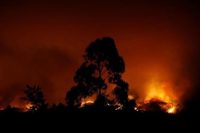 Τεράστιες δασικές πυρκαγιές μαίνονται στην καρδιά της Πορτογαλίας