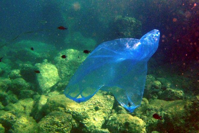 Πλαστική σακούλα… Τέλος;