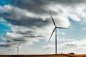 wind-farm_1000