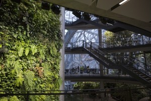 A staircase leads to four levels inside the Amazon.com Inc. Spheres in Seattle, Washington, U.S., on Tuesday, Jan. 23, 2018. The online retailer is scheduled to unveil the spheres Monday morning following seven years of planning and construction. The glass orbs have 40,000 plants from around the world. Photographer: Mike Kane/Bloomberg via Getty Images