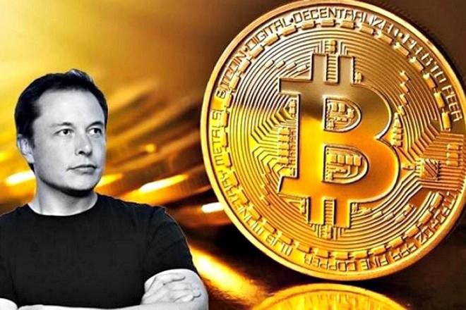 bitcoin-musk