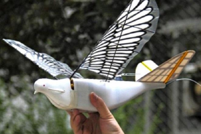 Κίνα: Περιστέρια- drones παρακολουθούν πολίτες