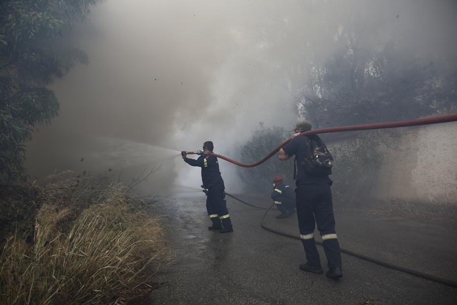 Πυρκαγιά σε δασική περιοχή στα Κανάκια Σαλαμίνας