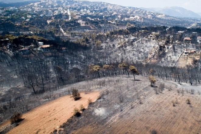 Συνολικά 1136 μέχρι χθες οι αιτήσεις έκτακτης ενίσχυσης από τους πληγέντες της πυρκαγιάς