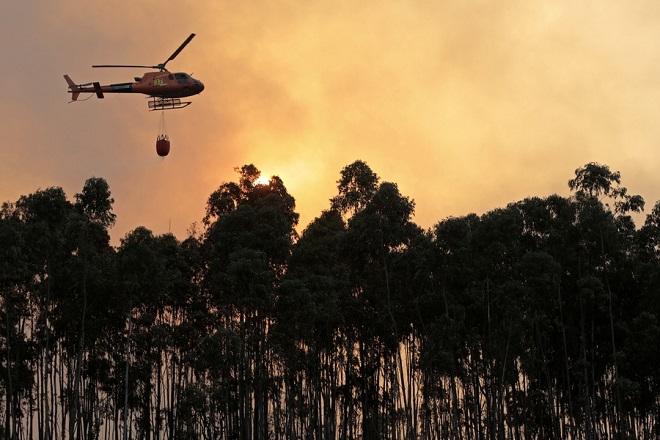 Στο «κόκκινο» η Ευρώπη – Δασικές πυρκαγιές στην Πορτογαλία εξαιτίας του καύσωνα