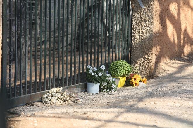 Γλάστρες με λουλούδια μπροστά από εξωτερική πόρτα οικοπέδου σε δρόμο που οδηγεί στη θάλασσα μετά τη φονική πυρκαγιά στο Μάτι Αττικής, Παρασκευή 3 Αυγούστου 2018. Η Πυροσβεστική, χθες, με επίσημη ενημέρωση, γνωστοποίησε πως ο αριθμός των νεκρών από την φονική πυρκαγιά ανέρχεται στους 87. Σύμφωνα με την ενημέρωση του υπουργείου Υγείας, εξακολουθούν να νοσηλεύονται σε νοσοκομεία της Αττικής 41 εγκαυματίες, από τους οποίους οι δέκα σε Μονάδες Εντατικής Θεραπείας. Επίσης, ένα παιδί παραμένει στο Νοσοκομείο Παίδων «Η Αγία Σοφία», σε καλή κατάσταση. Η κυβέρνηση ξεκινά μάχη κατά των αυθαίρετων κτισμάτων μετά τα τραγικά αποτελέσματα τις πυρκαγιάς στο Μάτι. ΑΠΕ-ΜΠΕ/ΑΠΕ-ΜΠΕ/ΑΛΕΞΑΝΔΡΟΣ ΜΠΕΛΤΕΣ