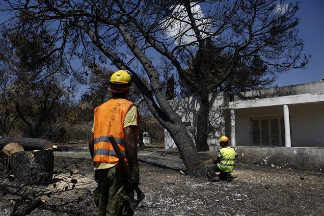 Εργάτες κόβουν καμένα δέντρα μέσα από την αυλή σπιτιού, μετά την θανατηφόρα πυρκαγιά, στο Μάτι, κοντά στην Αθήνα, Κυριακή 5 Αυγούστου 2018. Κατέληξε άνδρας εγκαυματίας ηλικίας 85 ετών, που νοσηλευόταν στη Μονάδα Εντατικής Θεραπείας (ΜΕΘ) του Ευαγγελισμού, ανεβάζοντας τον αριθμό των θυμάτων της πυρκαγιάς στο Μάτι σε 90. ΑΠΕ-ΜΠΕ/ΑΠΕ-ΜΠΕ/ΓΙΑΝΝΗΣ ΚΟΛΕΣΙΔΗΣ