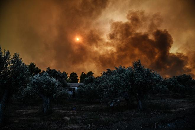 Μάχη με τις φλόγες δίνουν οι δυνάμεις της Πυροσβεστικής για να περιορίσουν το μέτωπο της φωτιάς στη Στροφυλιά Ηλείας