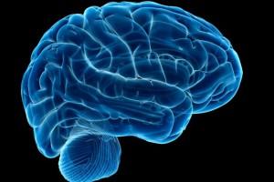 brain stroke health