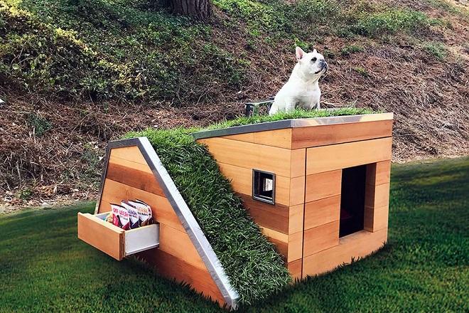 Ένα «πράσινο» σπίτι για σκύλους