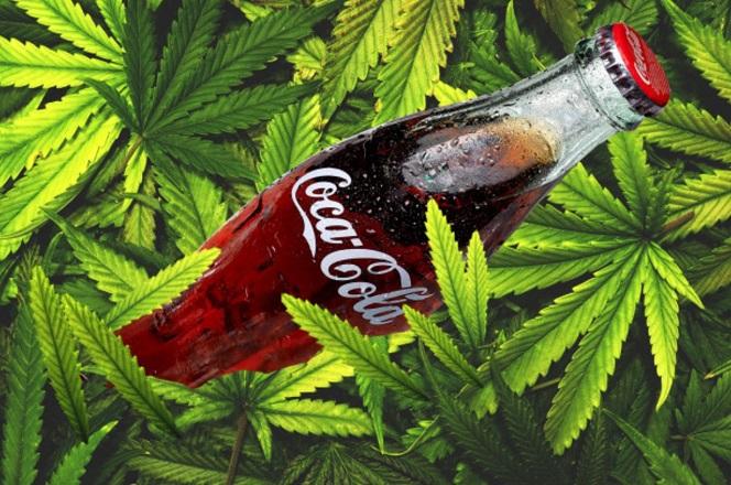 Bloomberg: Η Coca-Cola εξετάζει το ενδεχόμενο παραγωγής ποτών με κάνναβη