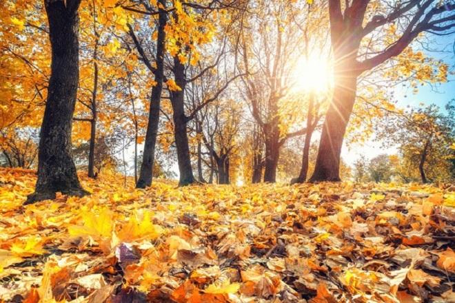 Και -επίσημα- φθινόπωρο από τα χαράματα της Κυριακής