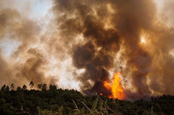 Ανεξέλεγκτη η φωτιά στη Σιθωνία Χαλκιδικής – Προληπτική εκκένωση οικισμού